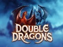 Double Dragons NL1 Slot
