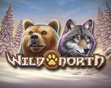 wild north gokkast