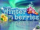 Winter Berries NL1 Slot