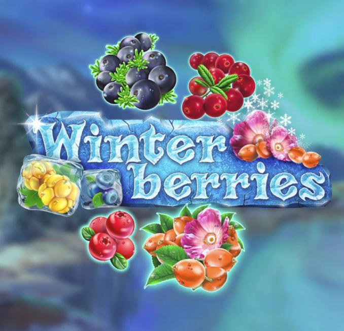 winterberries gokkast