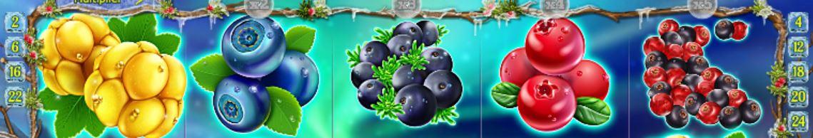 winterberries symbols