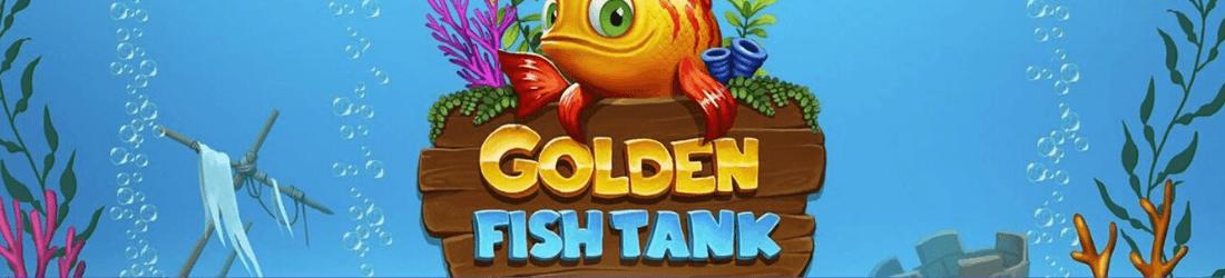 golden fish tank NL yggdrasil